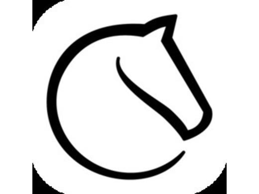 WCU Online Chess League