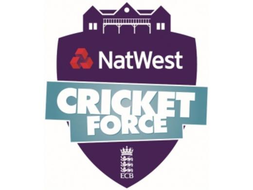 CricketForce 2017