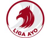 Pertamax Liga AYO - Logo