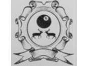 The Baldock Pool League - Logo