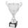 "NFCL Club Cup ""Scotland"""