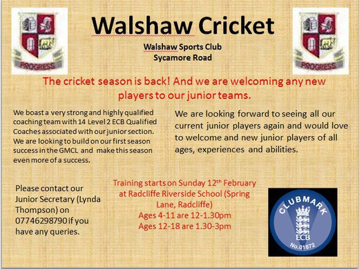 Junior cricket flyer
