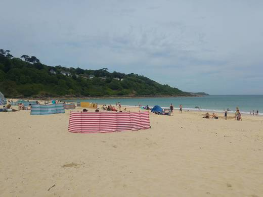 Mark Gatenby Cornwall 10K Swim