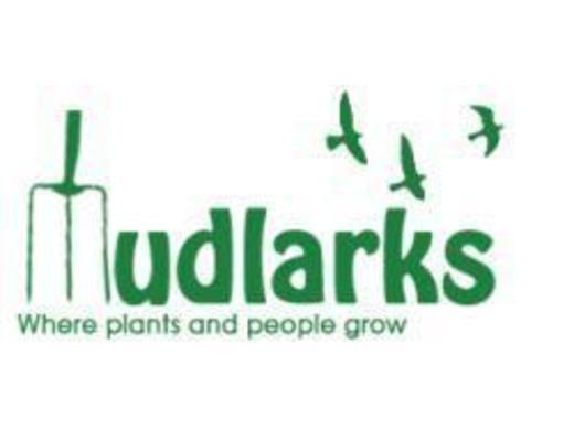 Mudlarks logo