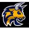 HC Torino Bulls