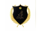 Ghana Pro League Logo