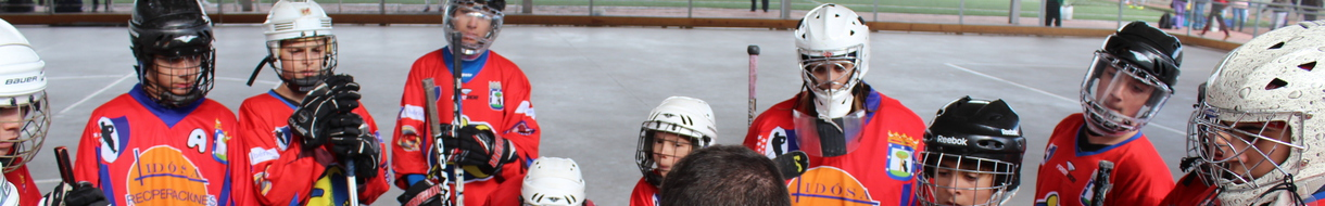 Liga FMP Hockey Línea