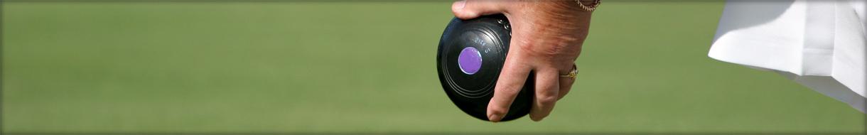 Berwickshire Bowling Association