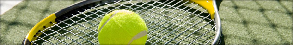 South Norfolk Tennis League