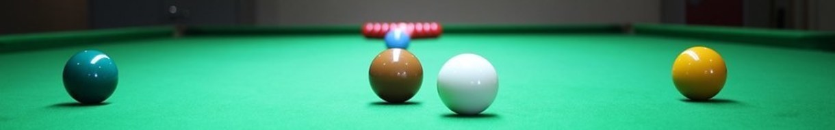 Stafford & District Billiards & Snooker League