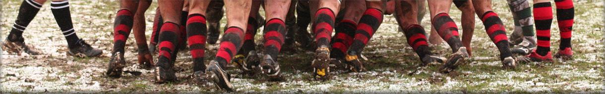 Warwickshire Colts