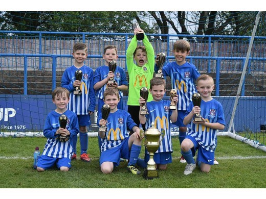 Cup Final Victory for Under 8s Whites