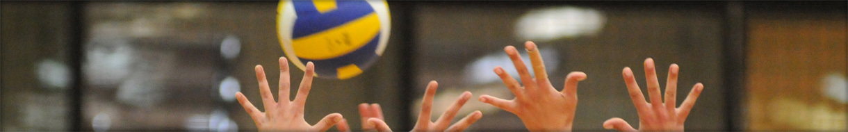 Spelthorne Volleyball Club