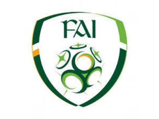 Seven WCSL players receive FAI Call-Ups