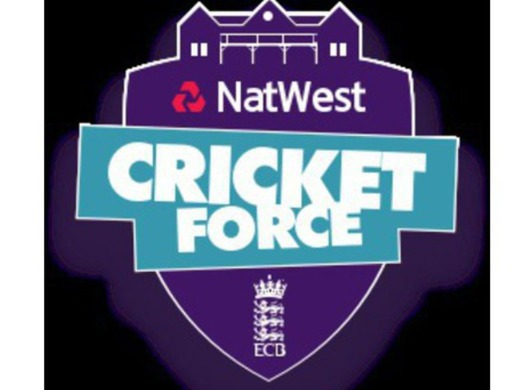 Cricket Natwest Force