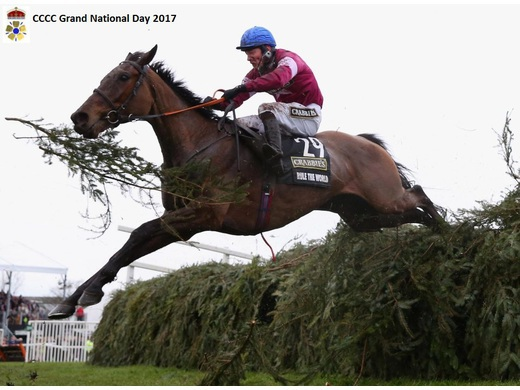 Grand National Day 2017