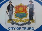 TRURO & DISTRICT POOL LEAGUE - Logo