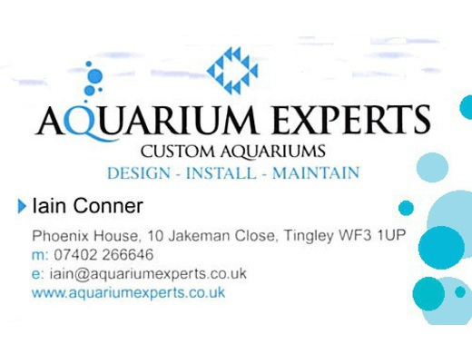 Custom design, installation and maintenance of aquariums.