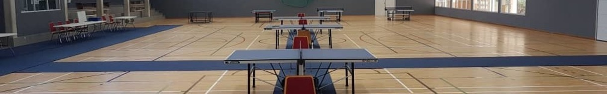 Namibia Table Tennis Association