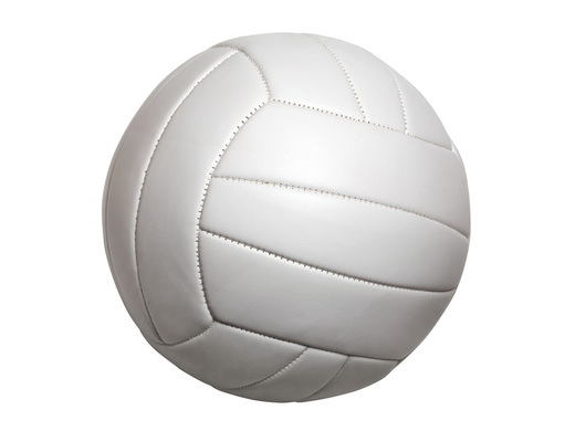 SVC lobbies Spelthorne Council for improved Volleyball facilities