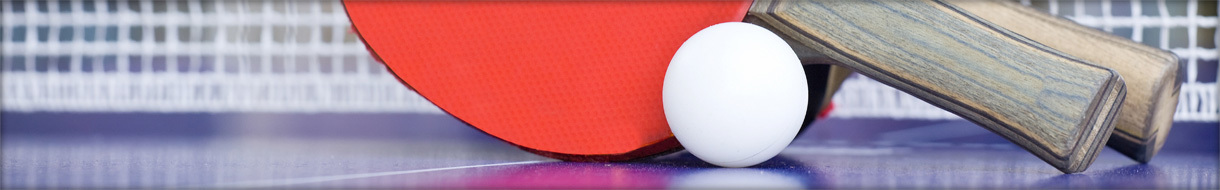 Wealden Table Tennis League