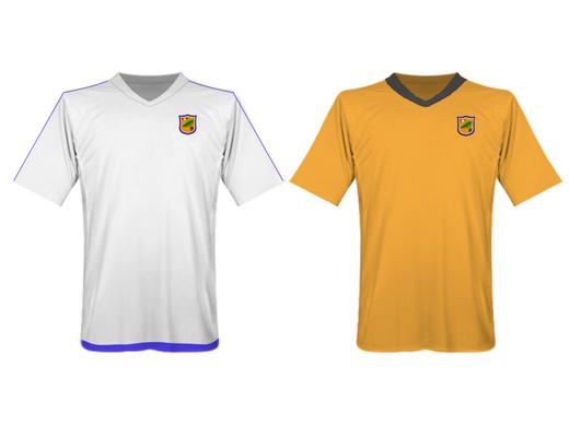 Hamstreet FC