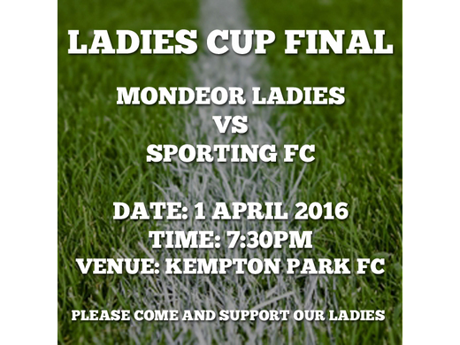 Mondeor Ladies Cup Final