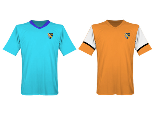 Prince Albert FC