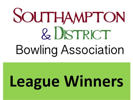 League and Competition Honours added to site