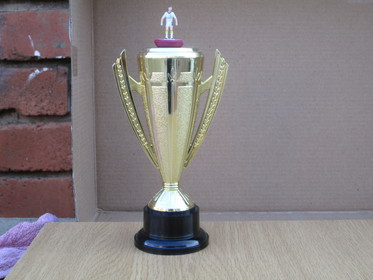 SATFA Winter Challenge - Junior Champion