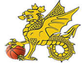 Wessex Basketball Association - Logo