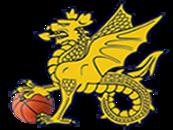 Wessex Basketball Association Logo