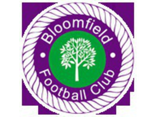 Bloomfield U15 (2002s) Looking New Players