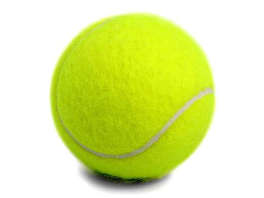 Quiz 7 Tennis Book Quiz