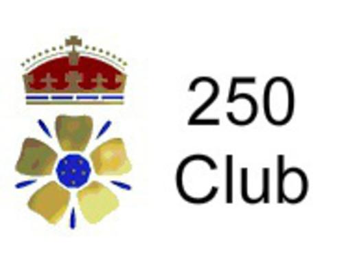 250 Club Draw