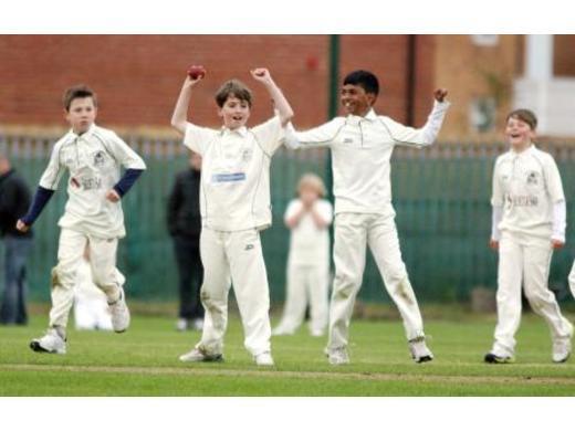 Junior cricket