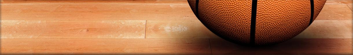 Iroquois Basketball Club