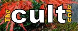 The Cult Cafe