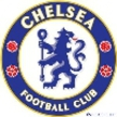 Chelseas Website